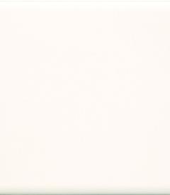 3.สีงา รุ่นธรรมดา ตราทีซีไอ